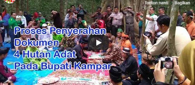 Bupati Azis Terima Usulan 4 Hutan Adat di Kampar