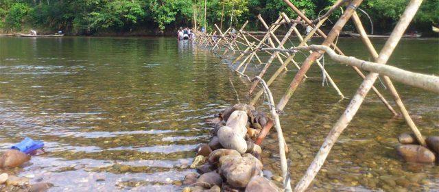 Pengelolaan Hutan Adat oleh Masyarakat Hukum Adat Kenegerian Batu Songgan