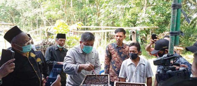 Kelola Madu Kelulut di Hutan Adat, Masyarakat Kenegerian Kampa Bisa Raup Rp4 Juta Perbulan